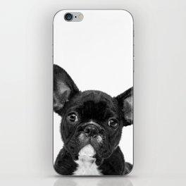 Black and White French Bulldog iPhone Skin