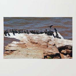 Double Crested Cormorant landing Rug