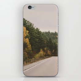 Adirondack Park iPhone Skin