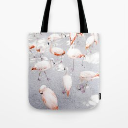 Pretty in Pink  |  Flamboyance of Flamingos Tote Bag
