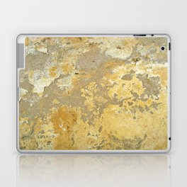 Metal Texture 948 Laptop & iPad Skin