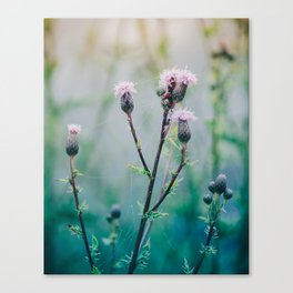 Wet Cold Morning. Canvas Print