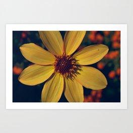 7. Flower Art Print