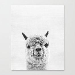 Alpaca, Animal, ZOO, Nursery, Minimal, Modern, Wall art Canvas Print
