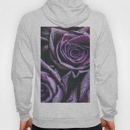 Macro photography of purple roses with raindrops. Hoody