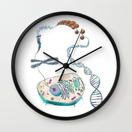 Cell to Helix Wall Clock