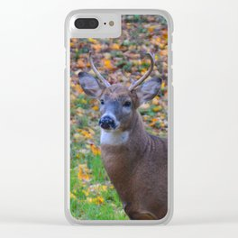 Curiosity of Youth Clear iPhone Case