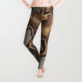Septarian Nodule Leggings