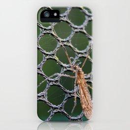 Mosquito macro iPhone Case