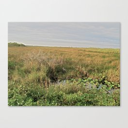 What Do You See Canvas Print