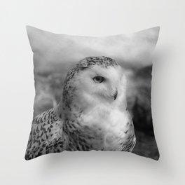 Snowy Owl - B & W Throw Pillow