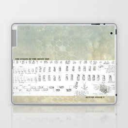 Stages of the Honey Bee Laptop & iPad Skin