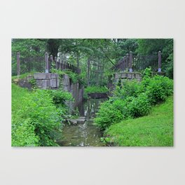 Rites of Spring Canvas Print
