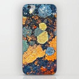 Lichen Art iPhone Skin