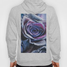 Macro photography of purple - neon roses with raindrops. Fantasy and magic concept. Selective focus. Hoody