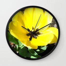 Yellow Crocus Flowers Wall Clock
