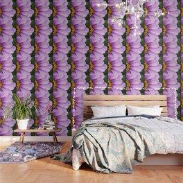exhale Wallpaper