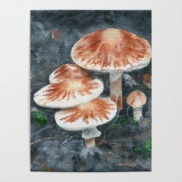 Family of mushrooms by Teresa Thompson Poster