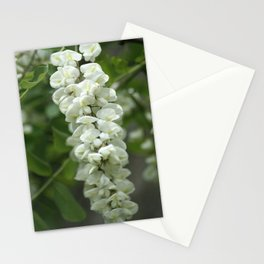 Floral Tree Stationery Cards