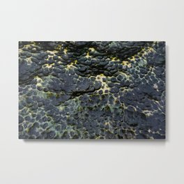 Pitted Seastone Metal Print