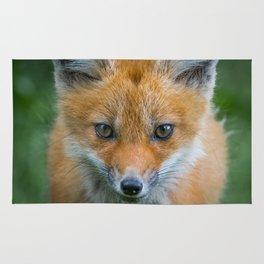 Fox cub Rug