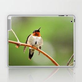 Hummingbird XVII Laptop & iPad Skin