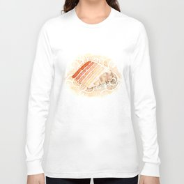 Ombre Cake Slice Long Sleeve T-shirt