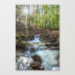 Early Spring Sunrise Canvas Print
