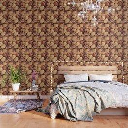 Hazelnuts and almonds Wallpaper