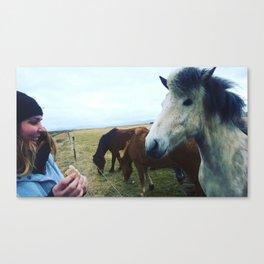 Horse Afield Live Canvas Print