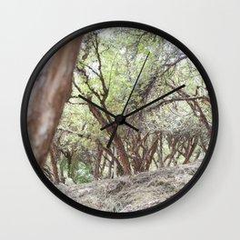 Perspective of Sacsayhuaman trees Wall Clock