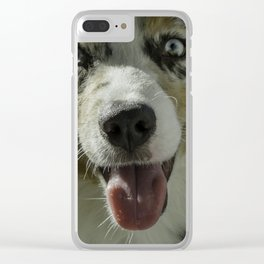 Australian Shepherd Clear iPhone Case