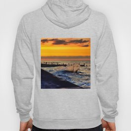 Ocean sunset at walcott Hoody