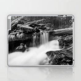 Panther Creek Laptop & iPad Skin