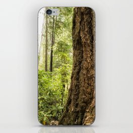 Been Around a Long Long Time iPhone Skin