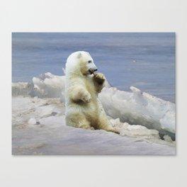 Cute Polar Bear Cub & Arctic Ice Canvas Print