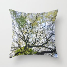 Centenary oak with the trunk covered in moss and green plants Throw Pillow