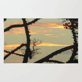 SUNSET BETWEEN A TREE Rug
