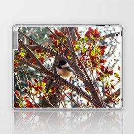 Charming Chickadee Laptop & iPad Skin