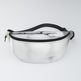 Male Study Fanny Pack