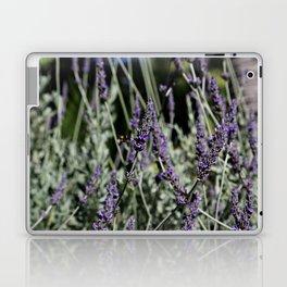 Lavanda Laptop & iPad Skin