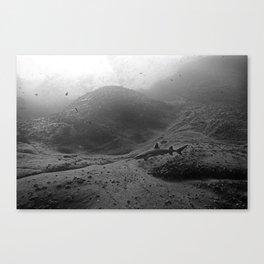 Roca Partida Canvas Print