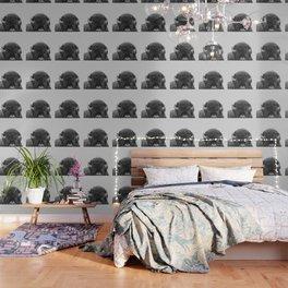 Buffalo Print, Bison Wall Art, Photography Print Wallpaper