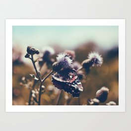 Summer Feelings Art Print