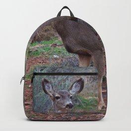 Zion Deer Backpack