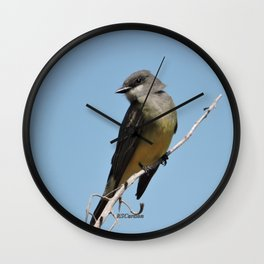 A Cassin's Kingbird Scopes the Skies for Flies Wall Clock