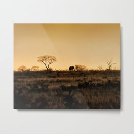 Elephant Sunset Silhouette Metal Print