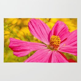 Pink beauty Rug