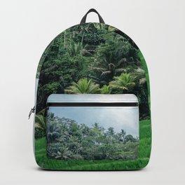 Ricefield in Ubud, Bali Backpack