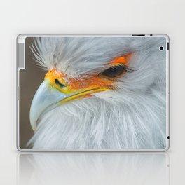 Feathers and eyelashes Laptop & iPad Skin